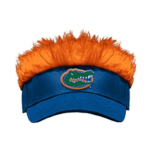 The Northwest Company Officially Licensed NCAA Florida Gators Flair Hair Visor ()