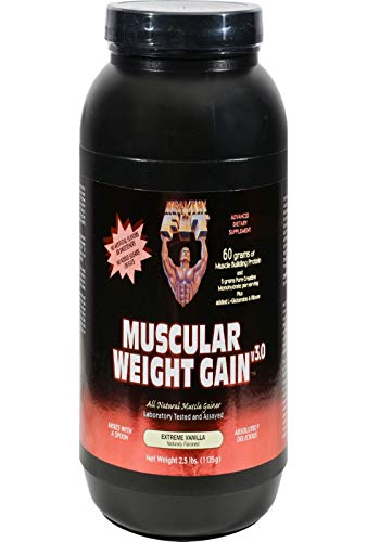 Healthy 'N Fit Muscular Weight Gain v3.0- Natural Vanilla (2.5lb): Highest Protein Gainer- Only protein builds muscle. From America's #1 Brand in Supplements Technology and Purity.