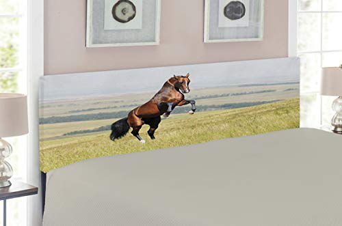 Lunarable Horses Headboard for Queen Size Bed, Bay Akhal-Teke Horse Stallion Rearing on The Field Noble Mammal Outdoors Pastoral, Upholstered Decorative Metal Headboard with Memory Foam, Green Brown