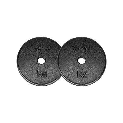 dumbbell plates