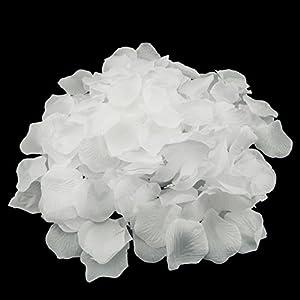 Adorox 200pcs Silk Rose Petals Artificial Flower Wedding Party Vase Decor Bridal Shower Favor Centerpieces Confetti 2