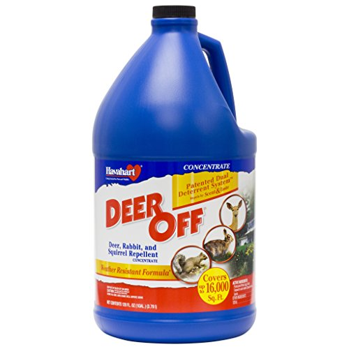 Deer Off 128 oz Concentrate Deer, Rabbit, and Squirrel Repellent  DF128CT by Havahart