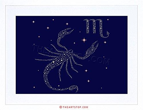 (The Art Stop Painting Illustration Zodiac Star Sign Scorpio Scorpion Framed Print F12X4807)