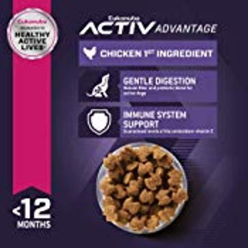 Eukanuba Puppy Dry Dog Food Chicken