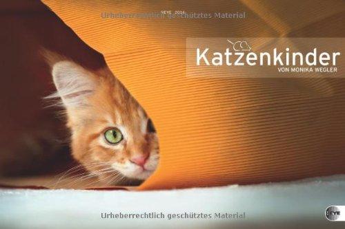 Katzenkinder Posterkalender 2014