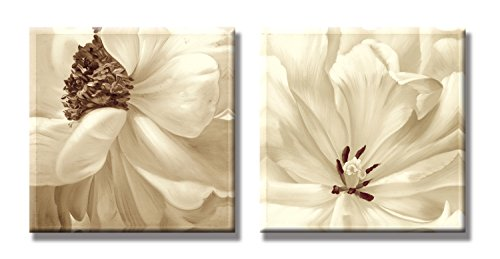 60 Cm Cream (SEVEN WALL ARTS - 2 Piece Modern Decorative Artwork Canvas Print Floral Cream and Tan Flower Art Set for Home Decoration 24 x 24 Inch x 2 Pcs)