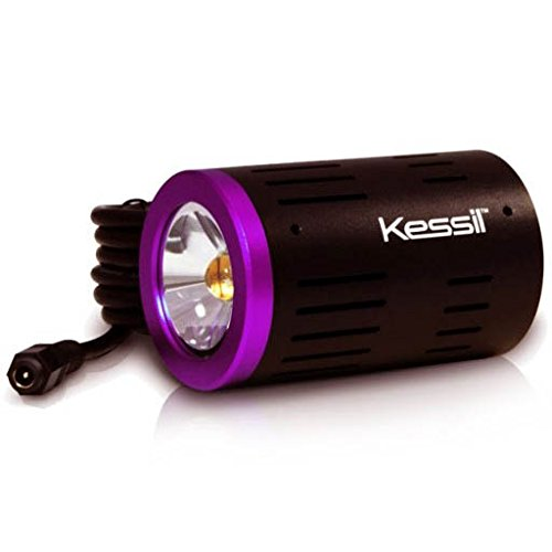 Kessil H160 Tuna Flora LED Refugium Grow Light (Best Macroalgae For Refugium)