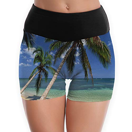 Compression Shorts Coconut Palm Tree High Waist Yoga Shorts Non See Through Workout Shorts