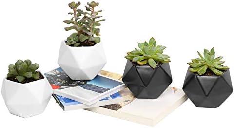 Plant Pot Rosoli 4pcs Ceramics Indoor Planter Garden Pots For