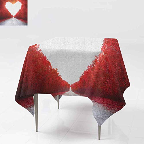 AndyTours Washable Tablecloth,Love,Road to Valentines Tunnel Autumn Trees Foliage Forest Landscape Scenery Rural Nature,for Banquet Decoration Dining Table Cover,50x50 Inch Red White