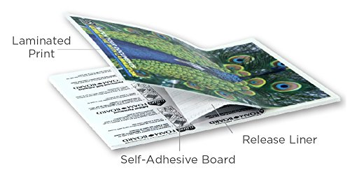 Gloss Pouch Foam Boards (USI Self-Adhesive (Cold) Foam Pouch Boards, Gloss, 8 1/2 x 11 1/2 Inches, 3/16