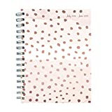 Dots Medium Weekly Monthly 2018-2019 Planner