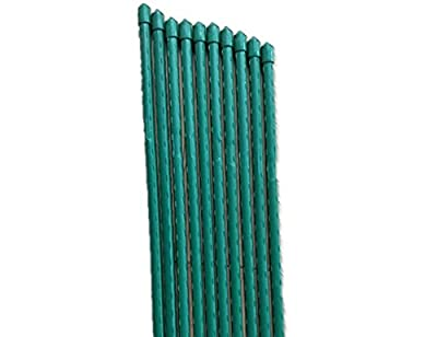 Tingyuan Garden Stakes Steel Plant Stakes