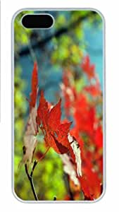 Hot iPhone 5S Customized Unique Print Design Red Foliage Autumn New Fashion PC White iPhone 5/5S Cases