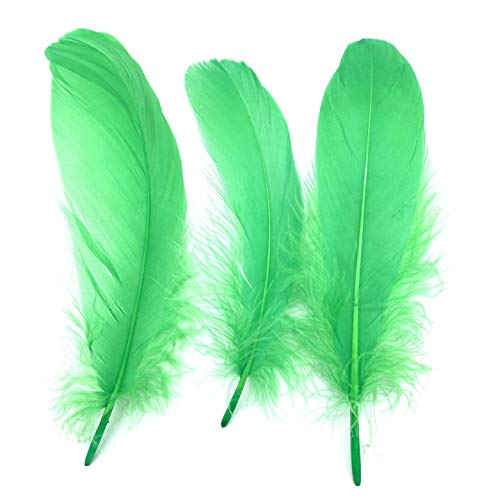 PANAX Real Goose Feathers with 15-22cm/ 6-9 Inches Length - 100 Pieces, 21 Color variants, Carnival, Halloween, Crafts, Handwerk, DIY, Clothing, Costumes, Decoration -
