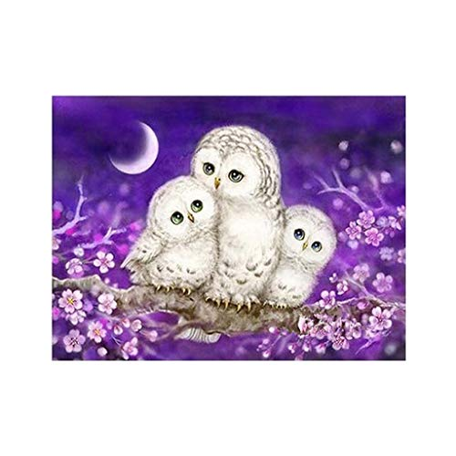 (Baulody DIY 5D Embroidery Diamond Painting by Number Kit for Adult, Three Owl Diamond Embroidery Dotz Kit Home Wall Decor-20x25cm (Mutilcolor))
