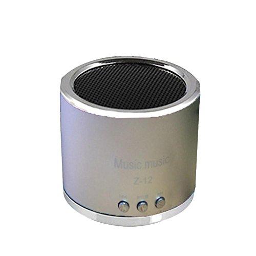 Price comparison product image MChoice Wireless Portable Mini Speaker FM Radio USB Micro SD TF Card MP3 Player (Silver)