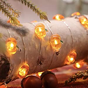 MIYA LIFE Pumpkin String Lights 10ft 40LEDs Copper Wire with The Remote & Timer for Thanksgiving Halloween Christmas…