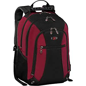 "Amazon.com: SwissGear Skywalk 16"" Padded Laptop Backpack"
