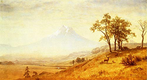 Canvas Collection Mount (Albert Bierstadt Mount Hood 1863 Private Collection 30