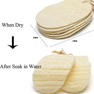 Exfoliating LOOFAH SPONGES-100% ALL NATURAL Loofah 8 PACK Men Women Groomer loofah sponge for shower bathing hygiene body wash