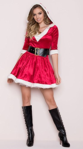 Tv Themed Costumes (Leg Avenue Women's 2 Piece Mrs. Claus Costume, Red/White,)