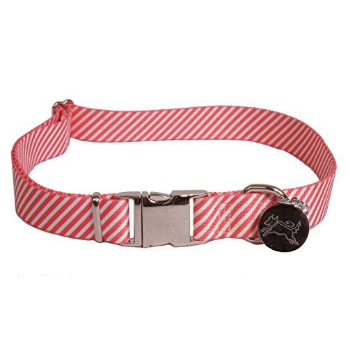 Red Striped Dog Collar - Yellow Dog Design Premium Dog Collar - Southern Dawg Seersucker Red - Medium 14