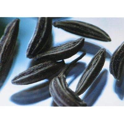 Cutdek Caraway HERB Heirloom 100 Seeds : Garden & Outdoor