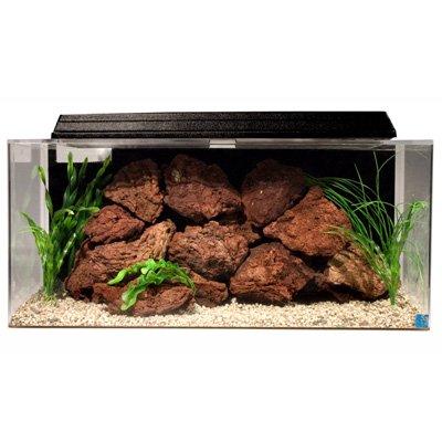 SeaClear 40 gal System II Acrylic Aquarium, 36 by 15 by 1...