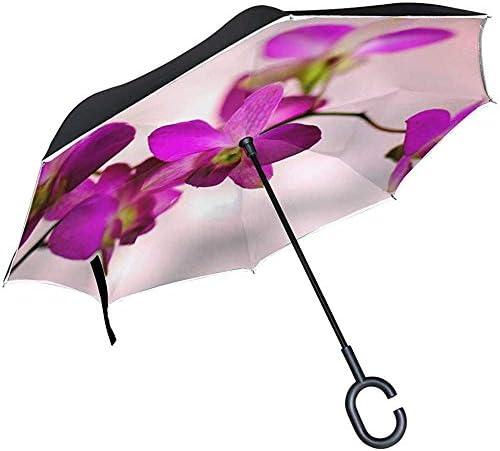 Alice Eva Inverted Umbrella Flowers Lila Lillies Lila Blume Natur Floral Umbrellas Reverse Taschenschirm Big Straight Umbrella