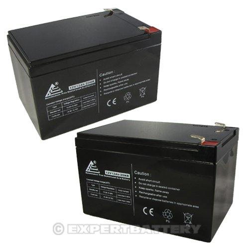 2 Pack ExpertPower 12 Volt 12 Ah Rechargeable Battery || EXP12120 Size 2 Pack - 12V 12 AH (Battery Scooter Handicap)