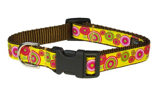 Sassy Dog Wear 13-20-Inch Yellow/Fuchsia Swiss Dot Dog Collar, Medium