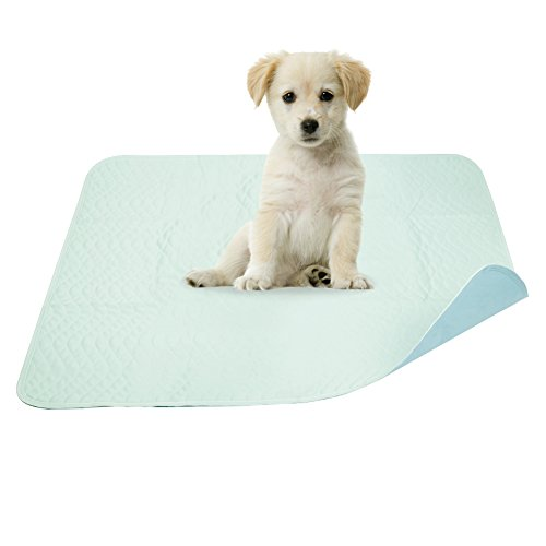 """Pidsen Washable Dogs Puppies Training Mat,2 PackTravel Pee Pads for Dogs Ultra Soft Premium Waterproof Reusable Quilted Washable Large Exercise Pee Pads,Size 32 """"X 36 """" (Blue)"""