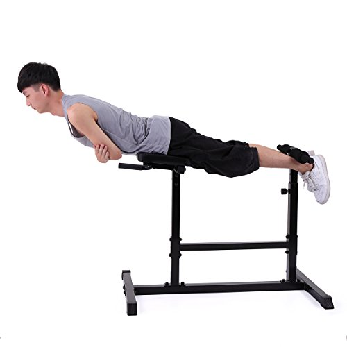 Lazymoon roman chair back hyperextension abdominal bench gym