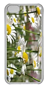 Customized iphone 5C PC Transparent Case - White Daisies Personalized Cover