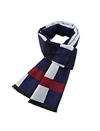 XICLASS Mens Winter Cashmere Scarf Fashion Formal Soft Scarves for Men