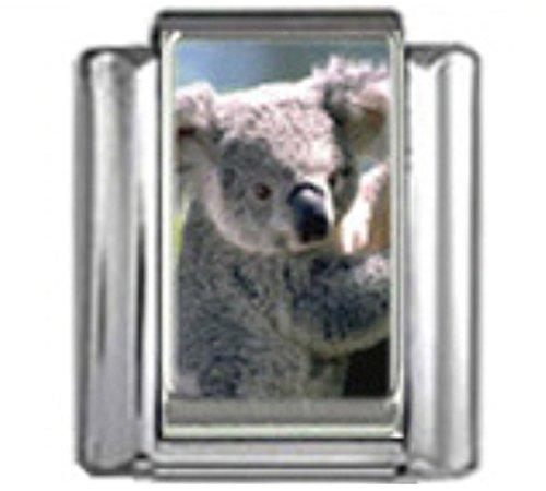 Stylysh Charms Koala Bear Australia Photo Italian 9mm Link AN050