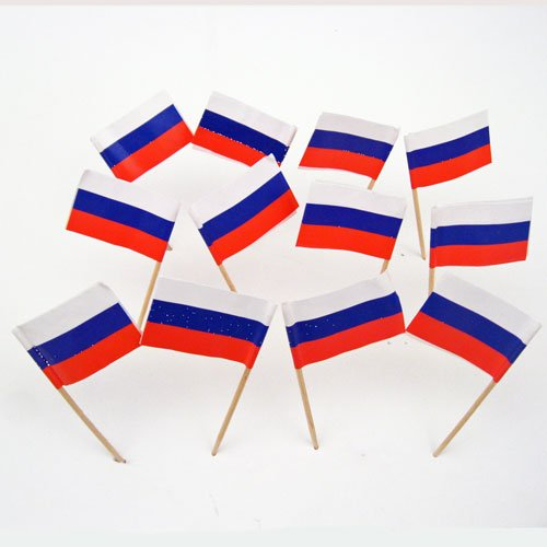 Russia Russian Flag Toothpicks 100 product image