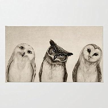 TSlook Fashions Doormat Three Cute Owl Indoor/Outdoor/Front Welcome Door Mat(23.6 x15.7 ,L x W)