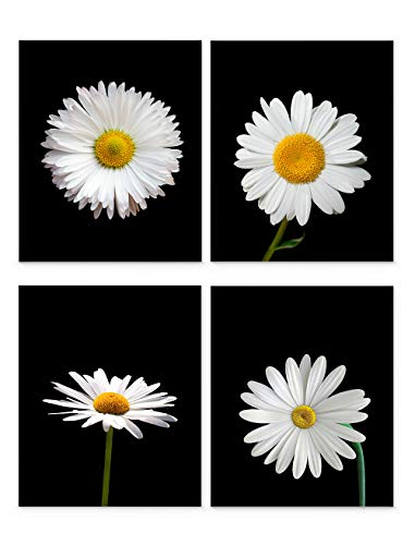 Daisy Wall Art, 8