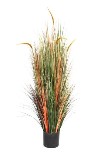 Laura Ashley 5 Foot Tall Onion Grass with Cattails by Laura Ashley
