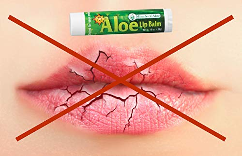 3-Pack SPF-15 Sunscreen Aloe Lip Balm, 15 oz stick