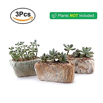 T4U 5.5 Inch Ceramic Succulent Pot Planter with Drainage Hole Set of 3, Stone Shape Rectangle Window Box Cactus Plant Containers Gift for Mom Sister Aunt Best for Home Office Table Desk Decoration : Garden & Outdoor
