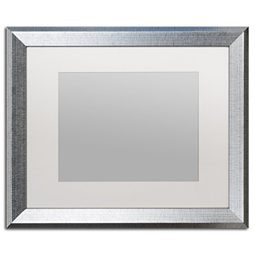 Photo Framed 16x20 (Trademark Fine Art Heavy Duty 16x20 Silver Picture Frame with 11x14 White Mat)