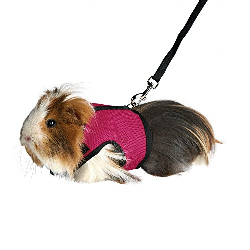 and Rabbit Soft Mesh Harness with Leash, Suitable for Small Animals about 2 KG (Rose Red) ()
