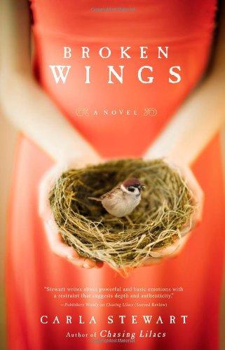 Read Online Broken Wings: A Novel PDF