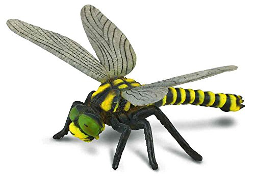 Collecta Insects Golden-Ringed Dragonfly Toy Figure - Aut...