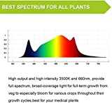 ONEO 1000W LED Grow Light Bar Full Spectrum Sunlike 3500K and 660NM White Plant Light for Indoor Plants Veg and Especially Bloom - No Fans No Noise Design