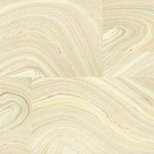 Modern Nature Onyx Wallpaper