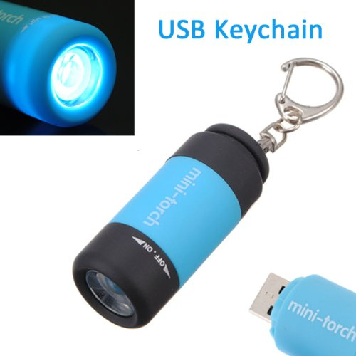 0.3w Mini Keychain USB Rechargeable LED Flashlight Torch (Random Color)